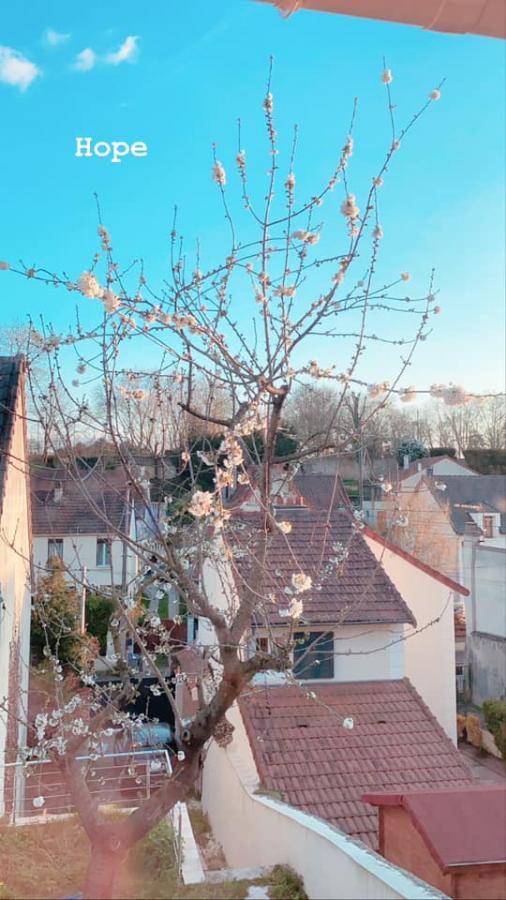 #AMAFENETRE Amandine, Conflans Sainte-Honorine, 27 mars