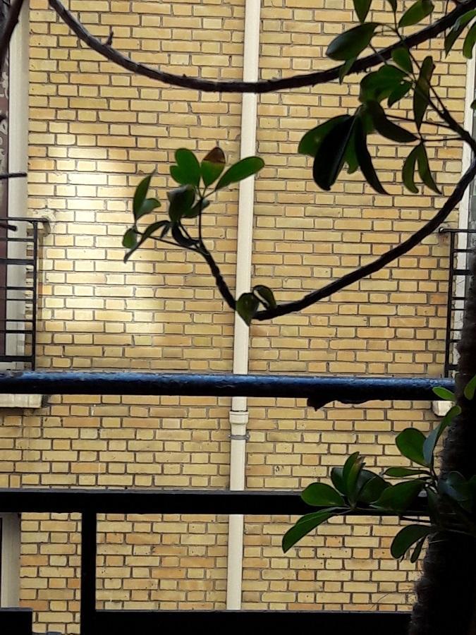 #AMAFENETRE Annie, Paris, fenêtre sur cours Porte d'Orléans, 8 avril