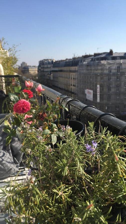 #AMAFENETRE Babeth, Paris Oberkampf, 26 mars