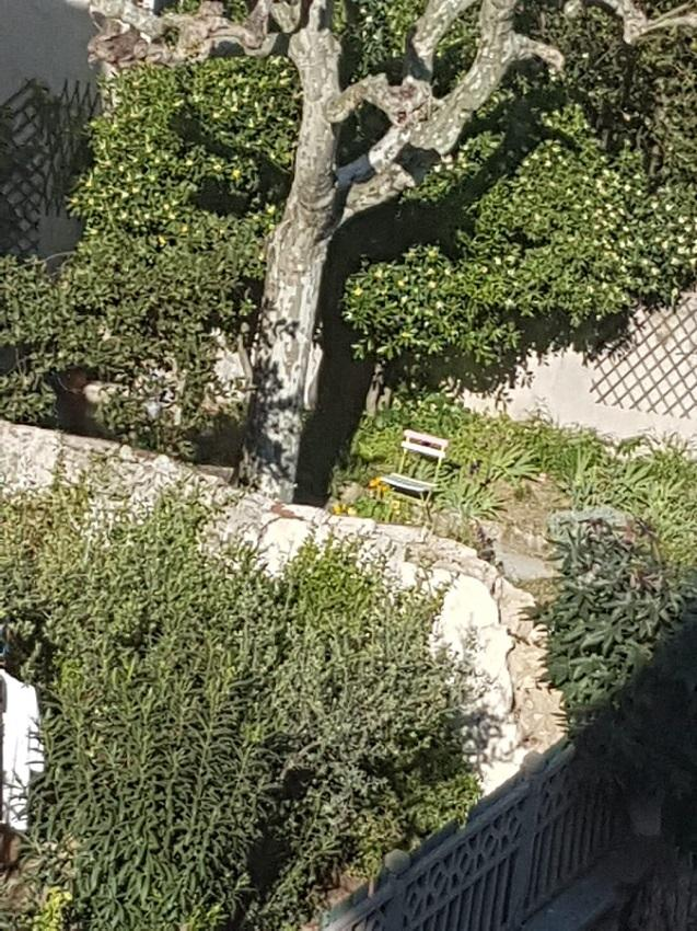 #AMAFENETRE Carla, Marseille, 9 avril