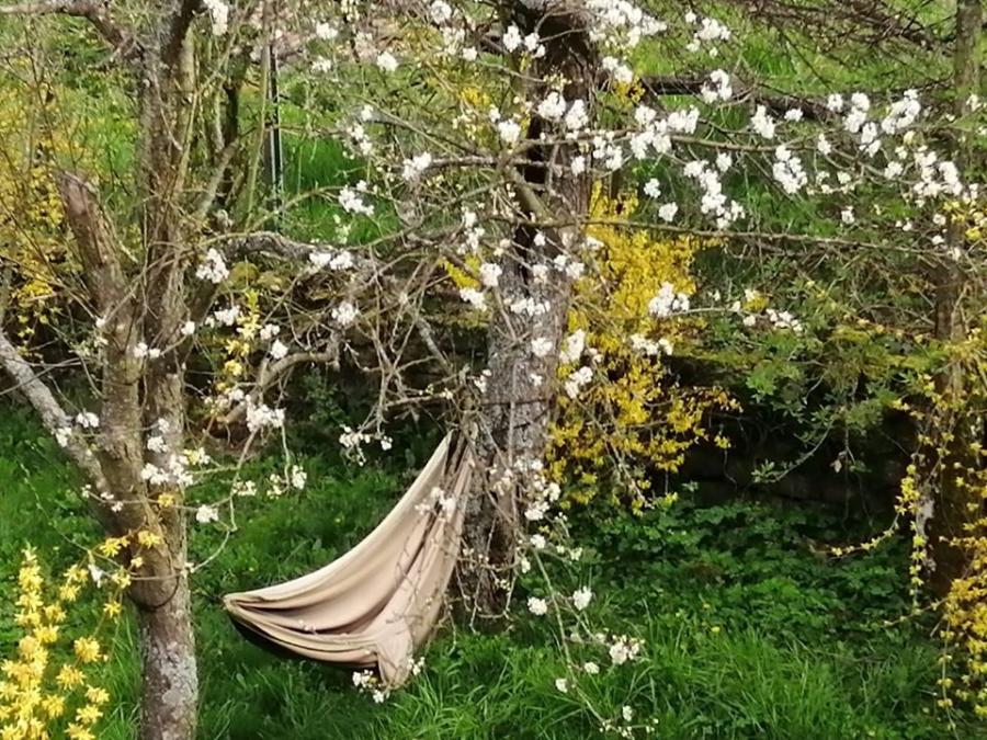 #AMAFENETRE Chistiane, Gorcy, 15 avril