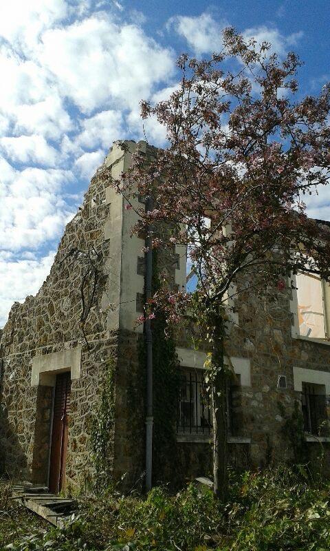 #AMAFENETRE Jeanne, Saint-Menoux (Allier), 20 avril