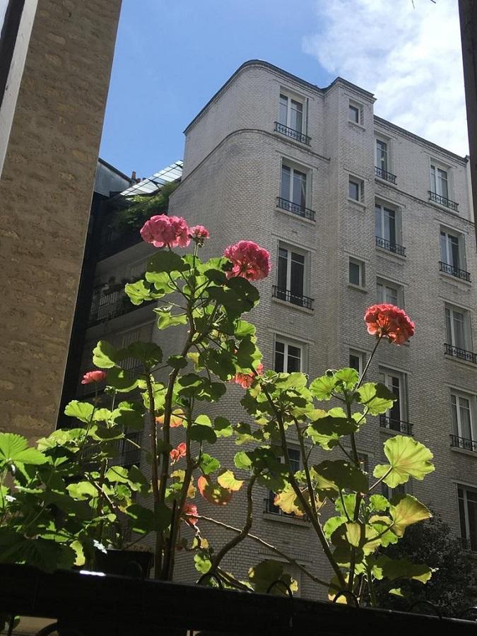 #AMAFENETRE Leïla, Paris 6e, 10 mai