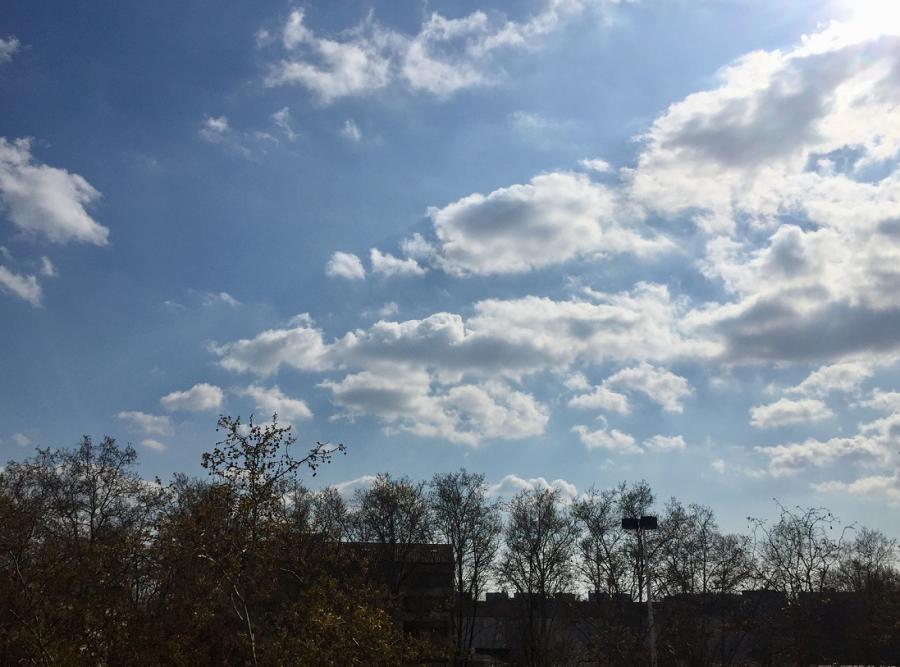 #AMAFENETRE Ophrys, Lyon 7e, 25 mars