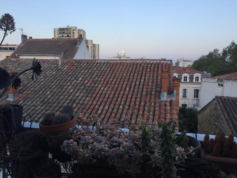 #AMAFENETRE Philippe, Montpellier, 6 avril