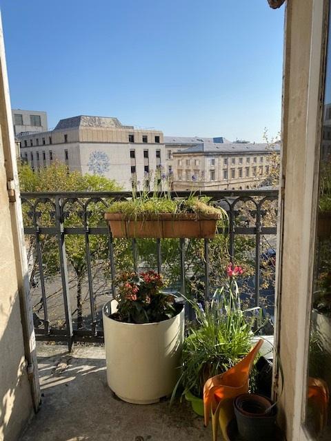 #AMAFENETRE Sara, Paris, 20 avril