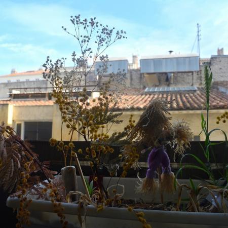 #AMAFENETRE Alex, Marseille, 28 mars