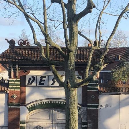#AMAFENETRE Dominique, Lille, Entrepôt Désir, 29 mars