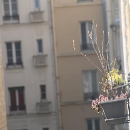 #AMAFENETRE Emmanuelle, Paris 12e, 28 mars