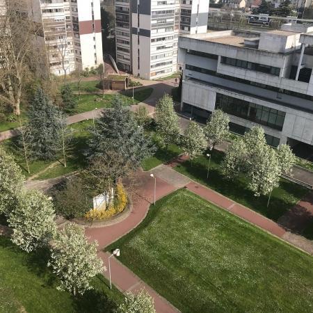 #AMAFENETRE May, Créteil, 20 mars / le jour de l'équinoxe de printemps