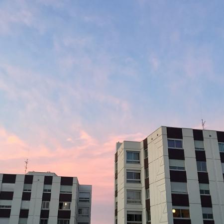 #AMAFENETRE Ophrys, Lyon 7e, 26 mars