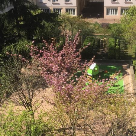 #AMAFENETRE Sylvie, Vanves, 5 avril